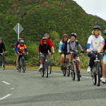 Cyclists on Shelly Bay Road